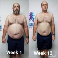 Weeks 1-12